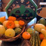 10月31日 ハロウィンかぼちゃをいれたアレンジご用意してます!パーティーに最適!
